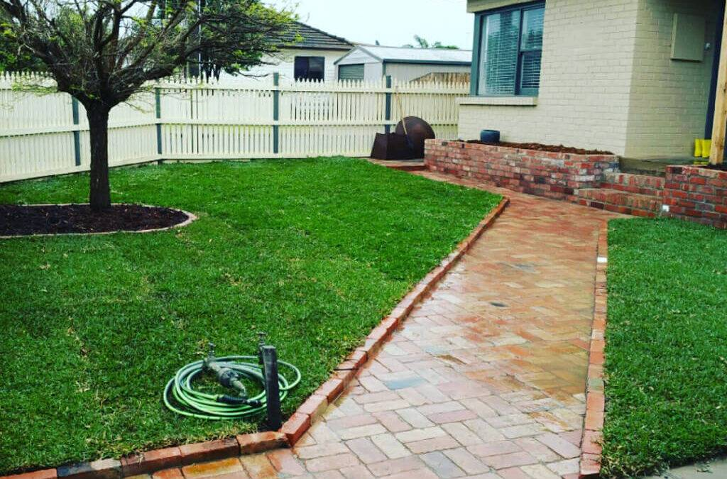 Keeping your lawn healthy all year round