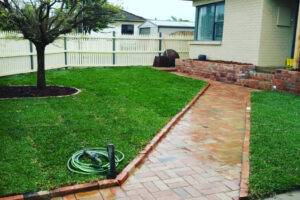 Healthy lawn - Lawn care during winter